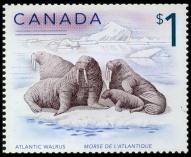 Walrus Stamp